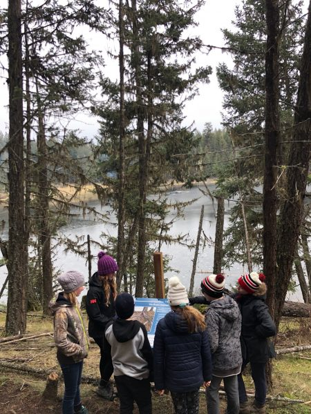 Gr 7 Outdoor Ed students examine a hydrology sign about tree roots on a fall field trip